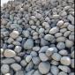大块鹅卵石批发 景观鹅卵石厂家直销 园林绿化找老姚石材